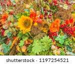 autumn composition of flowers ... | Shutterstock . vector #1197254521