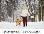 little boy enjoying a sleigh...   Shutterstock . vector #1197308254