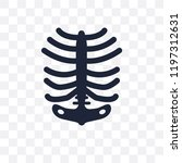 human ribs transparent icon....   Shutterstock .eps vector #1197312631