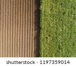 aerial view   rows of soil... | Shutterstock . vector #1197359014