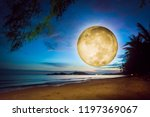 fantasy full moon over a beach. ... | Shutterstock . vector #1197369067