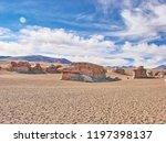 bolivia  salar de uyuni  arbol...   Shutterstock . vector #1197398137