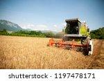 combine harvesting grain  on a... | Shutterstock . vector #1197478171