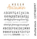 two font. vector hand drawn... | Shutterstock .eps vector #1197483997