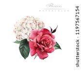 bouquet of flowers  watercolor  ... | Shutterstock . vector #1197567154