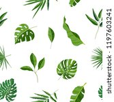 natural seamless pattern with... | Shutterstock .eps vector #1197603241