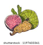beautiful drawing of delicious... | Shutterstock .eps vector #1197603361
