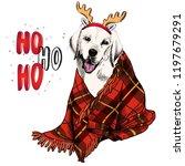 hand drawn portrait of beagle... | Shutterstock .eps vector #1197679291