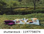 glamour picnic with homemade... | Shutterstock . vector #1197758074