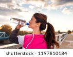 side view of fitness woman... | Shutterstock . vector #1197810184