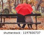 love  happy elderly couple in... | Shutterstock . vector #1197830737