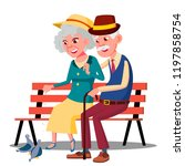 senior age family couple... | Shutterstock . vector #1197858754