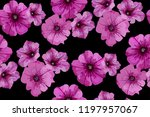 floral seamless background... | Shutterstock .eps vector #1197957067