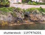 seacoast of cap d ail at...   Shutterstock . vector #1197976201