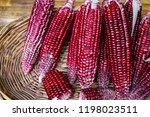 Red Corn In Basket For Healthy