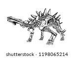 graphical sketch of stegosaurus ... | Shutterstock .eps vector #1198065214