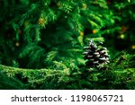 christmas or new year... | Shutterstock . vector #1198065721