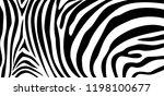 zebra pattern texture repeating.... | Shutterstock .eps vector #1198100677