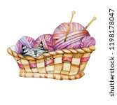 Stock photo basket with balls of thread and a cat watercolor drawing 1198178047