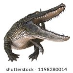 3d Illustration Alligator...
