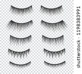 feminine lashes  set. false... | Shutterstock . vector #1198383991