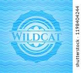 wildcat water wave concept... | Shutterstock .eps vector #1198404244