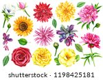 Set Of Flowers  Dahlia  Roses ...