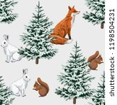 Christmas Trees  Red Fox  Whit...