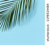 corner frame of fresh green... | Shutterstock . vector #1198524484