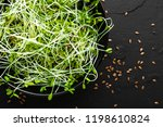 healthy vegetarian bowl dish... | Shutterstock . vector #1198610824