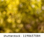 background with blurred effect... | Shutterstock . vector #1198657084