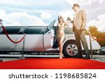 driver helping vip woman or... | Shutterstock . vector #1198685824