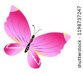 beautiful pink butterflies... | Shutterstock . vector #1198737247