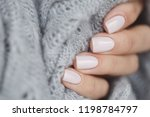 pink manicure nails with a grey ... | Shutterstock . vector #1198784797