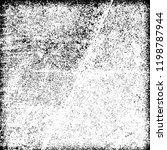 grunge texture black and white   Shutterstock .eps vector #1198787944