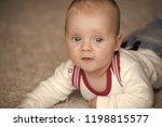 infant crawl on floor carpet.... | Shutterstock . vector #1198815577