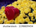 autumn flowers in a pot. yellow ...   Shutterstock . vector #1198839454