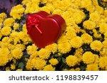autumn flowers in a pot. yellow ...   Shutterstock . vector #1198839457