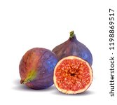 fresh  nutritious  tasty figs.... | Shutterstock .eps vector #1198869517