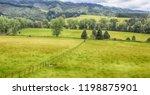 lush green meadows of nz... | Shutterstock . vector #1198875901