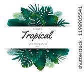 summer tropical green palm...   Shutterstock .eps vector #1198905541