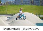 a little boy enjoys a balance... | Shutterstock . vector #1198977697