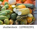 different pumpkins on city... | Shutterstock . vector #1199032591
