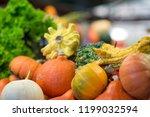 different pumpkins on city... | Shutterstock . vector #1199032594
