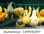 different pumpkins on city... | Shutterstock . vector #1199032597