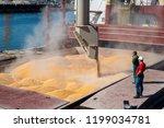 Corn In Bulk Carrier Hold....