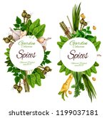 organic spices and herbal... | Shutterstock .eps vector #1199037181