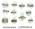 exotic tropical fruits sketch... | Shutterstock .eps vector #1199039614