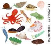 Shellfish Vector Marine Animal...