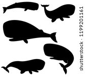 set of silhouettes sperm whale... | Shutterstock .eps vector #1199201161